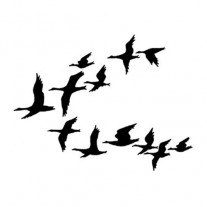 Lavinia Étampe Volée de canards