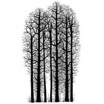 Lavinia Étampe Forêt