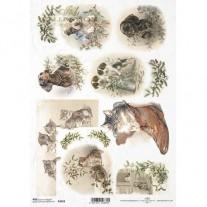 ITD Collection Papier de Riz Chiens & Chats