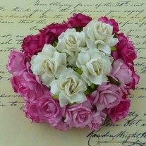 WOC Fleurs Wild Roses Roses/Blanches