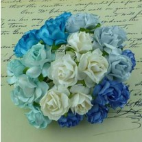 WOC Fleurs Wild Roses Bleues/Aquas/Blanches