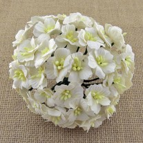 Wild Orchid Craft Fleurs Apple blossoms blanches
