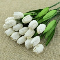 Wild Orchid Craft Fleurs Tulipes blanches