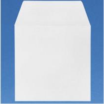 10 enveloppes de 6.5 X 6.5 pouces