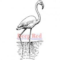 Deep Red Étampe Flamingo