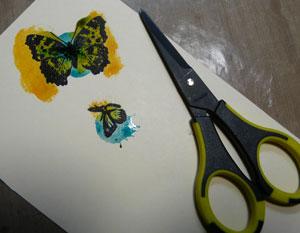 découper les papillons avec ciseau ek success